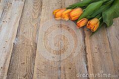 Beautiful spring orange tulips on a vintage wood background.