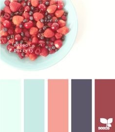 fantastic mixed berry color palette  him: darker tones (could be navy + maroon) her: lighter blue/green and coral
