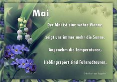 Gedichte, mitten aus dem Leben, von Norbert van Tiggelen. Sayings, Filofax, Party, Pictures, Wishes For Friends, Lyrics, Quotations, Qoutes, Proverbs