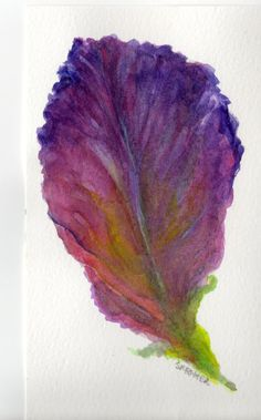 4 x 6 Original Purple Leaf Lettuce  Painting by SharonFosterArt, $8.50