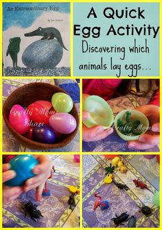 Virtual Book Club for Kids–Extraordinary Egg Extraordinary Egg by Leo Lionni and Discovering Which Animals Lay Eggs Preschool Lesson Plans, Preschool Education, Preschool Activities, Family Activities, Preschool Eggs, Leo Lionni, Kindergarten Anchor Charts, Kindergarten Science, Work With Animals
