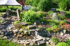 66 Id Es Et Astuces Pour Cr Er Votre Propre Jardin De
