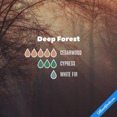 Deep Forest - Essential Oil Diffuser Blend