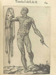 A flayed corpse holds his own skin in this page from a 1560 book by anatomist…