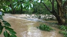 Flooding on Cape Hill Rd, Pukekohe.