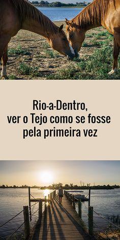 Rio-a-Dentro, ver o Tejo como se fosse pela primeira vez