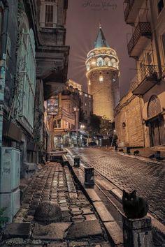 Puss-in-Bottes »par Efemir Art . Un chat noir protège le chemin de la Tour de Galata, Istanbul, Turquie.