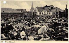 Memel Klaipėda Markt - Markttreiben Ansictskarte Lietuvos  1940