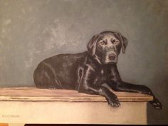 #Young Black Lab painting by Deana Marconi