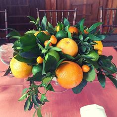 CITRUS centerpiece for yesterday's wedding! This isn't just any bowl of fruit! Each little detail was thoughtfully placed- oranges, limes and kumquats with a variety of glossy green leaves! @branchingoutevents #branchingoutevents