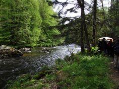 Schmankerlwanderung durchs wildromantische Ilztal Germany, Mountains, Landscape, Nature, Travel, Beautiful, Bavaria, Scenery, Naturaleza