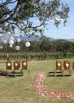 Wine country weddings   ccwp.com  www.atyourserviceweddings.net  www.facebook.com/rocnrevmike