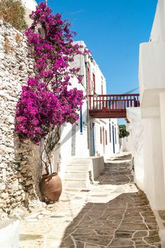Discover Sifnos: in the Cyclades, one of the most beautiful islands in the Aegean is eager to reveal its secrets. Mykonos, Best Places To Travel, Places To Visit, Beautiful Islands, Beautiful Places, Greece Islands, Greece Travel, Scenery, Around The Worlds