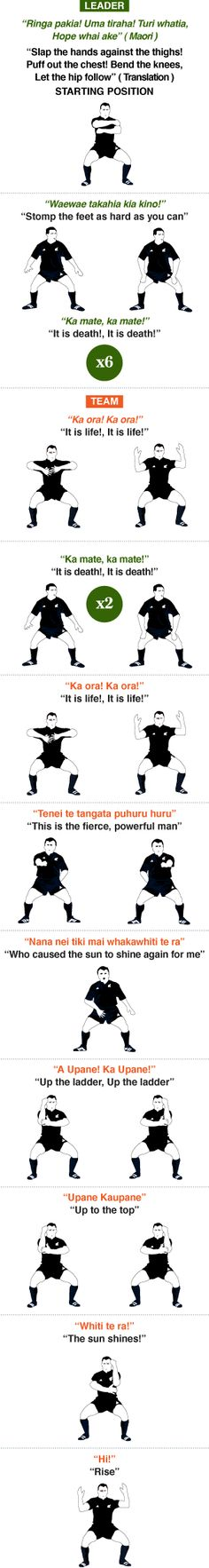How to do the Haka: Master the fearsome Maori dance in 11 Steps (with pictures) - Telegraph Rugby League, Rugby Players, Rugby Time, Rugby Rules, Rugby Workout, Rugby Girls, Rugby Coaching, Rugby Training, International Rugby