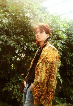 Baekhyun - 170720 'The War' album contents photo - [SCAN][HQ] Credit: Xiuminimal. Baekhyun, Exo Kokobop, Park Chanyeol, Plymouth, Chen, Exo 2017, Photo Scan, Exo Album, Ko Ko Bop