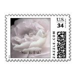 Save the Date Pale Pink Rose Petals Postcard Stamp - Stamps