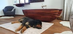 Wooden bathtub Baula and custom washbasin made in Sapele mahogany. Also two sleeping dogs. Residential project in Poland.  #archilovers #bathdesign #bathroom #classyinteriors #custombathroom #customsink #customwashbasin #designerdeinteriores #designinspiration #dogs #dogsofinstagram #interiordesign #interiordesignmag #luxuriousbath #luxurybathroomideas #luxurydesign #sleepingdog #uniquewooddesign #woodenbathtub #woodenwashbasin