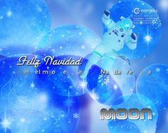 Cortinilla navideña para el Hotel Moon.