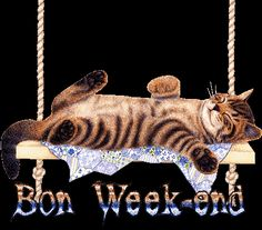 gifs bon week end Gif Bon Week End, Bon Week End Image, Bon Weekend, Hello Weekend, Week-end Gif, Animated Gif, Cat Exercise Wheel, Weekend Images, Excited About Life