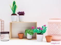 Vetplantjes haken? Met deze 4 gratis patronen maak je een leuk stel plantjes. Lees snel verder en pimp je interieur met je zelfgemaakte groen!