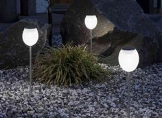 Enhance your evening curb appeal with easy to set up solar LED landscape lighting along the walkway or driveway.   Langston-Shaw Realty Group 435-625-1652
