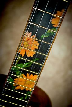 Chuck Moore builds hand crafted custom ukuleles on the Big Island of Hawaii using locally grown koa and native woods. Guitar Inlay, Cool Ukulele, Mandolin, Banjo, Dragon Ball, Instruments, Woodworking, Carving, Gallery