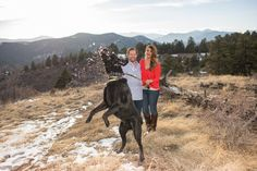 Dog Catching Snowball Mid Air on Engagement Session Photojournalistic Photo