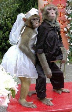 Mariage :)
