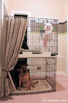 A great solution for organizing pet supplies in a small space and what to do with two large dog crates!