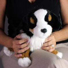 Stuffed Animals are companion pets in nursing homes. Memorable Pet dogs bring Joy For All and make great gifts. Wonderful therapy for Dementia and Alzheimer's.