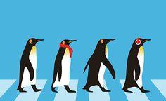 King Penguin walking, Penguin seed series vector art illustration