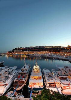 Yachting...pick one.