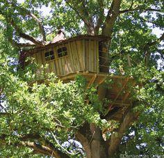 Cabane dans les arbres, hébergement atypique au Domaine des Ormes, Dol de Bretagne, France