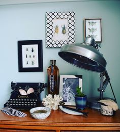 Eclectic Flea Market vintage deco living room. Entomology, bohemian, Farrow and ball Teresa's green, Vintage lamp typewriter, natural history, pattern and colour, calm Botanical interior decor ideas and inspiration, bohemian modern decorating
