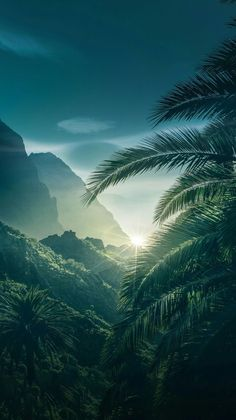 phone wall paper nature Wallpapers para celular e muito mais voc pode achar acessando o link. Beautiful Nature Wallpaper, Beautiful Landscapes, Green Nature Wallpaper, Nature Pictures, Beautiful Pictures, Landscape Photography, Nature Photography, Phone Photography, Travel Photography