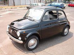 Fiat 500 (Cinquecento) Panda or ....