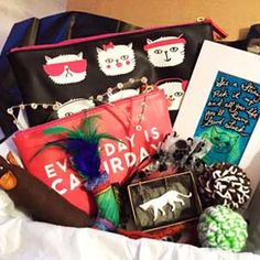 Crazy CatLadyBox - subscription box which donates a portion of proceeds to charities! Crazy Cat Lady, Crazy Cats, I Want To Cuddle, Makeup And Beauty Blog, Mama Cat, Cat Makeup, All About Cats, Cat People, Cat Treats