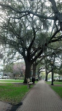 Forsyth Park Savannah Ga