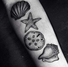 Seashell Tattoos on Forearm by DROCCOART