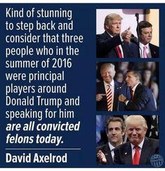 Gop Party, Republican Party, David Axelrod, Political Views, Donald Trump, Humor, Shit Happens, Words, Funny