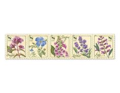 Herbs 29¢ • part of the USPS collection • Designed by Phil Jordan • April 7, 2011