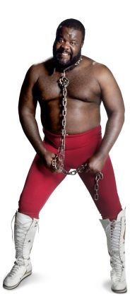 """Junk Yard Dog  Height: 6'3""""  Weight: 280 lbs.  From: Charlotte, N.C.  Signature Move: """"Thump"""" Powerslam  Career Highlights: WCW Six-Man Tag Team Champion; Mid-South North American Champion; Mid-South Tag Team Champion; 2004 WWE Hall of Fame Inductee"""