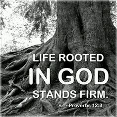 Life rooted in GOD stands firm. Proverbs - Be rooted in Christ Religion, Faith Quotes, Bible Quotes, Qoutes, Images Bible, Scripture Pictures, Proverbs 12, Proverbs Verses, Soli Deo Gloria