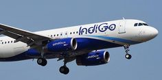 The Indigo airlines definitely provide an ample amount of services to the people without any problem at all. With the help of these services, a person can be much more comfortable in themselves.