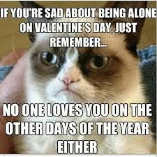 When your sad no one loves you on valentines day remember... No one loves you on any other Ay of the year either #grumpycat #funny #meme