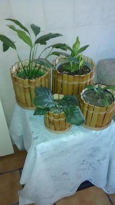 Cachepôs de Bamboo em todos os tamanhos. https://www.facebook.com/pages/Art-em-Bambu/488855574552532