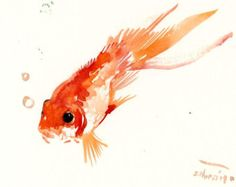 goldfish original watercolor painting 8 X 10 by ORIGINALONLY
