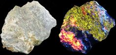 Anglesite (jaune), Calcite (orange), Smithsonite (bleu foncé et rose) et Hydrozinite (bleu pale). Cupric Mine, Indian Grave Peak, Utah, USA Taille=7 x 6 x 3.5 cm, 140 g Photo Holger Belzer Lum.nat. / UVSW (36 watt)