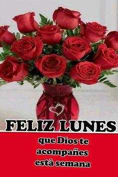 Resultado de imagen para rosas con feliz lunes