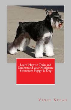 Learn How to Train and Understand your Miniature Schnauzer Puppy & Dog, Vince Stead - Amazon.com